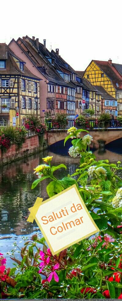#CartolineDalMondo: saluti da Colmar