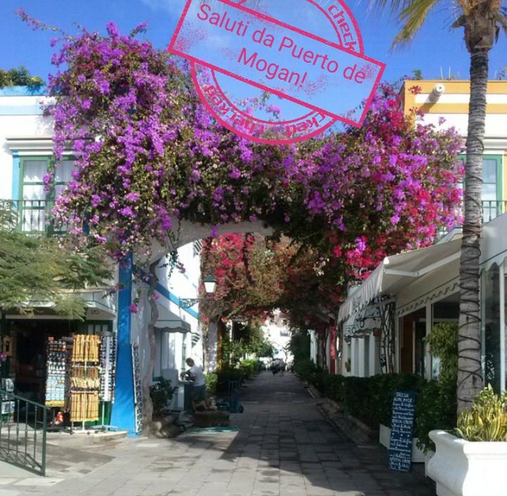 #CartolineDalMondo:Saluti da Puerto de Mogan