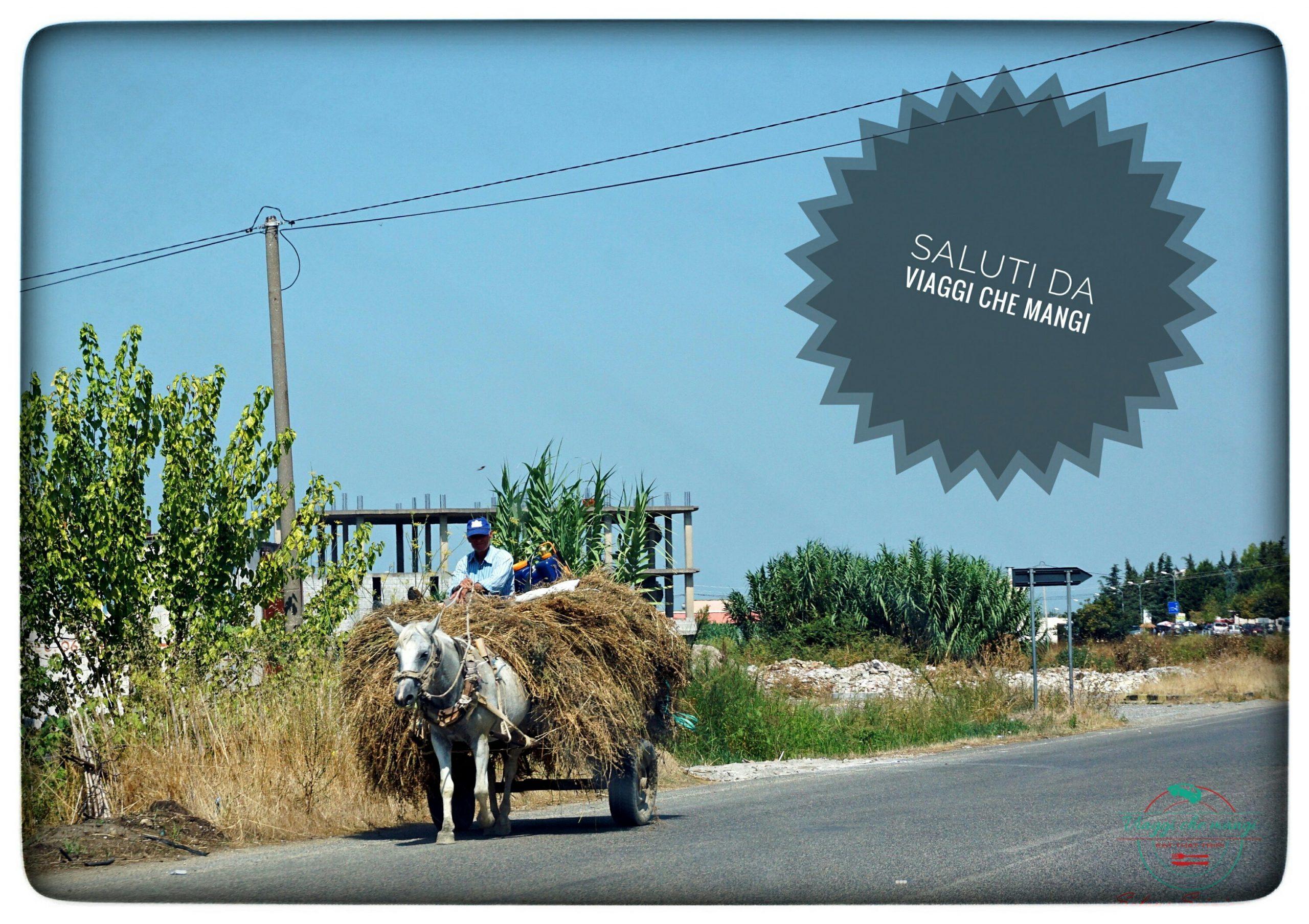 #CartolineDalMondo: saluti da Viaggi che Mangi